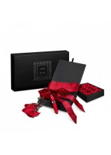 LELO Open Secret Gift Set